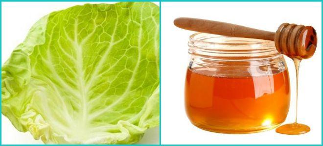 Капустный лист и мёд