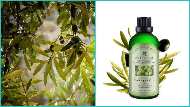 Оливковое эфирное масло