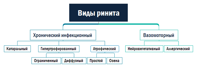 Таблица: виды ринита
