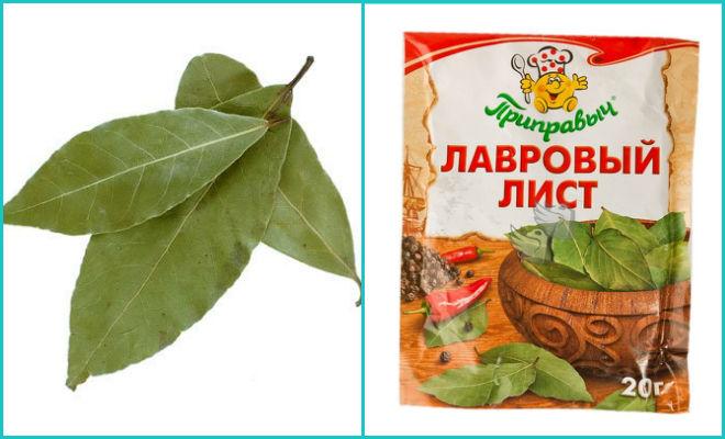 Листья лавровые
