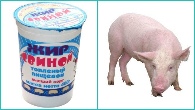 свиной жир