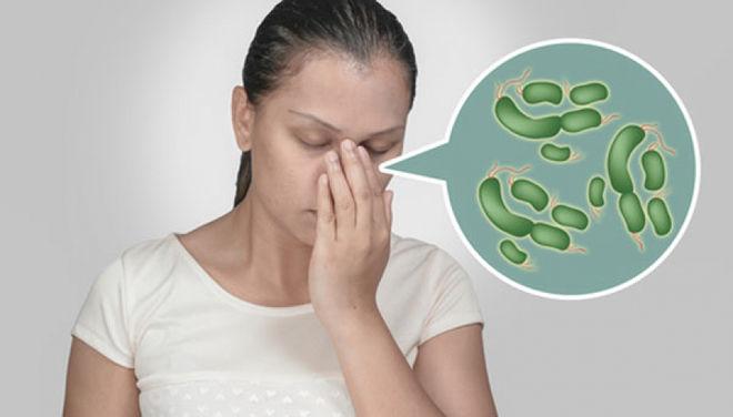Вирусы и бактерии гайморита