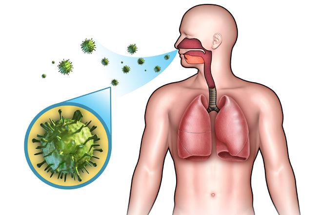 Инфекции заразны
