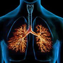 Бывает ли бронхит без кашля и температуры: как лечить бронхи
