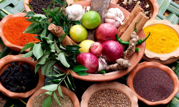 Мощные природные антибиотики вместо аптечных лекарств: травы, растения, ягоды и специи
