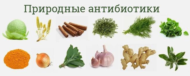 Натуральные средства против бактерий