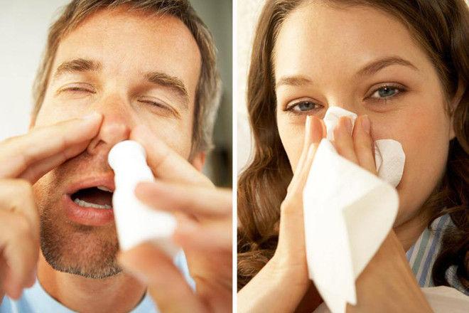 Какие эфирные масла использовать при простуде для детей и взрослых?